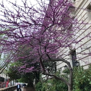 Photo Apr 12, 12 40 19 PM