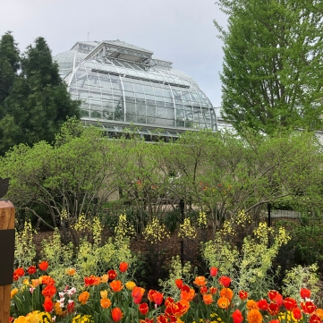 Outside the U.S. Botanical Gardens