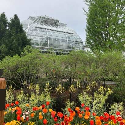 Outside the U.S. Botanical Gardens